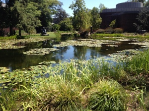Norton Simon Garden (photo by Wendy Kennar)